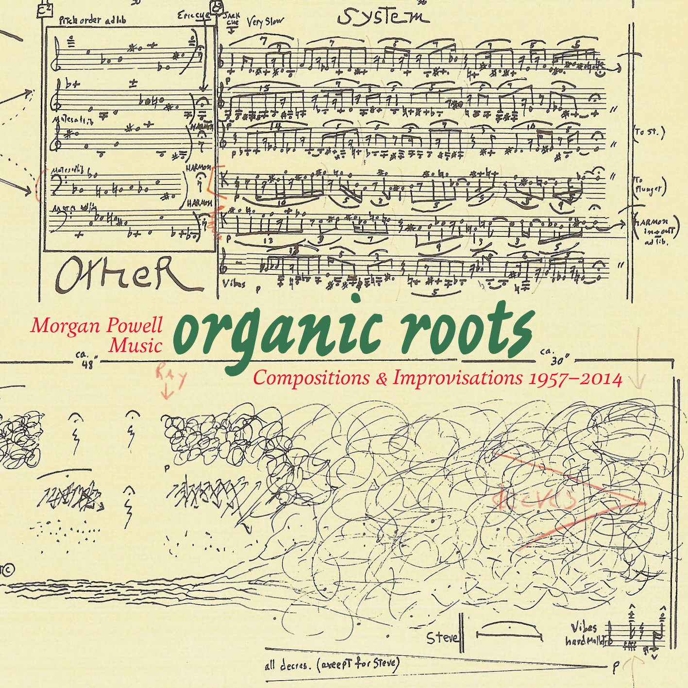 Morgan Powell Music: Organic Roots CD